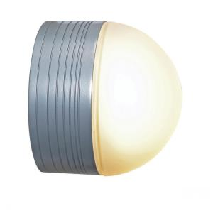 MicroMoon - One Light Wet Location Ceiling or Wall Fixture