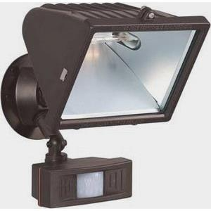 One Light Large Outdoor Flood with Motion Sensor