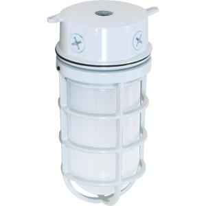 One Light Vapor Proof Small Outdoor Flush Mount
